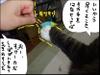 20080923_new