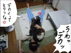 20081016__1_4