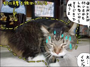20081021__2