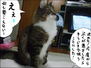 20081021__4