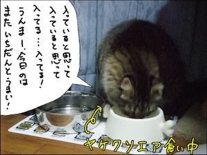 20081030__4
