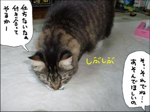 20081031__4
